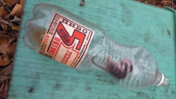 В Новосибирске полевая мышь выпила пива и умерла