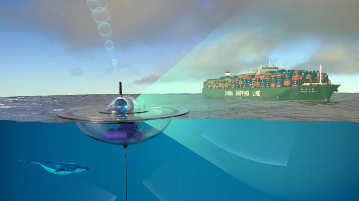 Автоматические датчики соберут информацию о морских животных и проходящих судах.