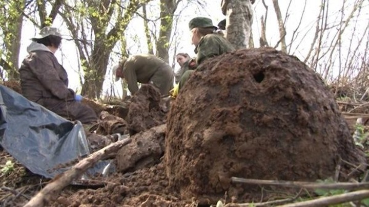 Под Волгоградом взорвался снаряд: погибли два поисковика