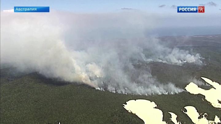 В Австралии горят леса, внесенные в список ЮНЕСКО