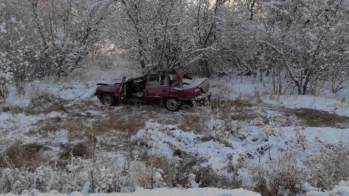 ДТП под Магнитогорском: погибли трое подростков, лошадь и жеребенок