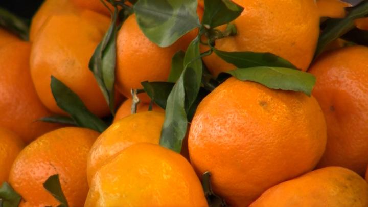 Самый новогодний фрукт: как выбрать мандарины