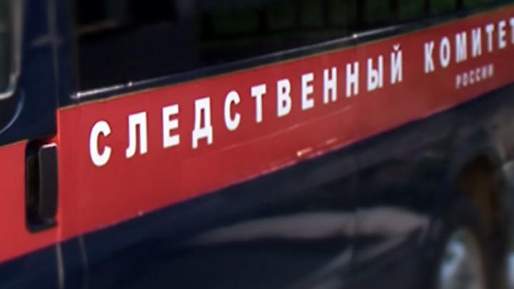 Убийцами нижегородской семьи оказались рабочие, помогавшие по хозяйству