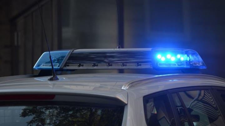 Убийца двух девушек во Владимирской области получил 17 лет