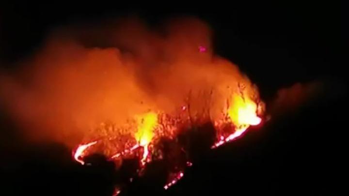 Пожар у горы Пикет дошел до Лазаревского района Сочи
