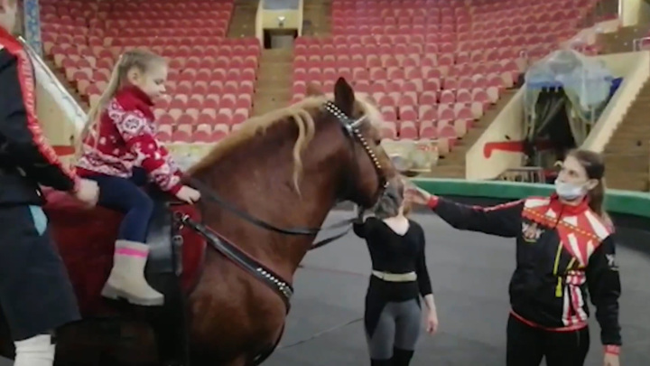 """В Омском цирке сбылась мечта еще одной участницы акции """"Елка желаний"""""""