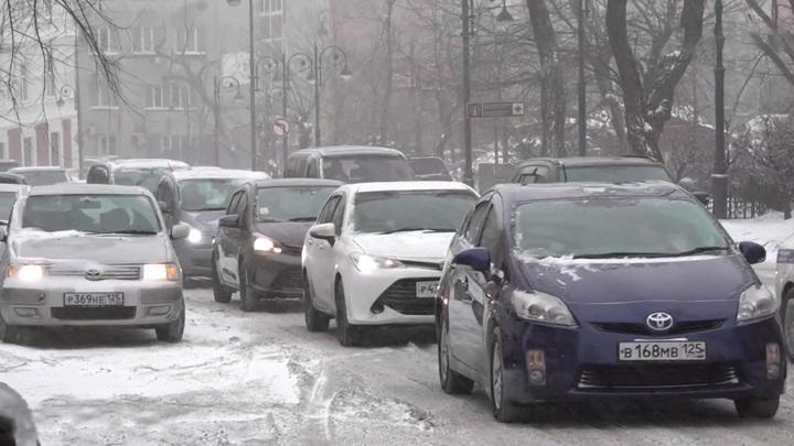 Власти Владивостока попросили родителей оставить детей дома из-за непогоды
