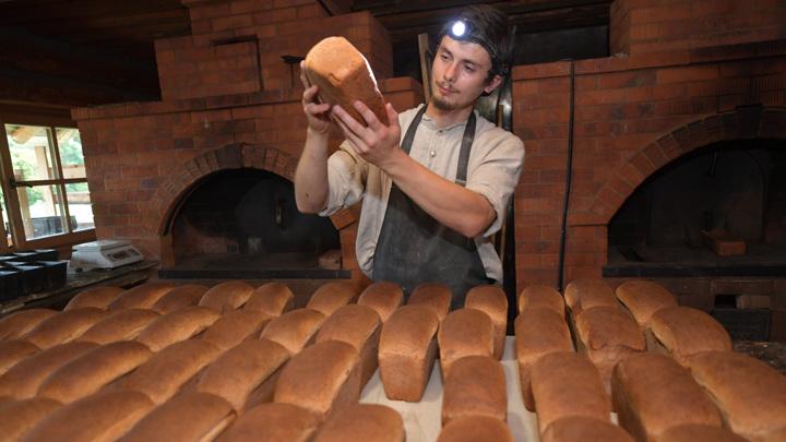 Правительство выделяет 5 млрд рублей для стабилизации цен на хлеб