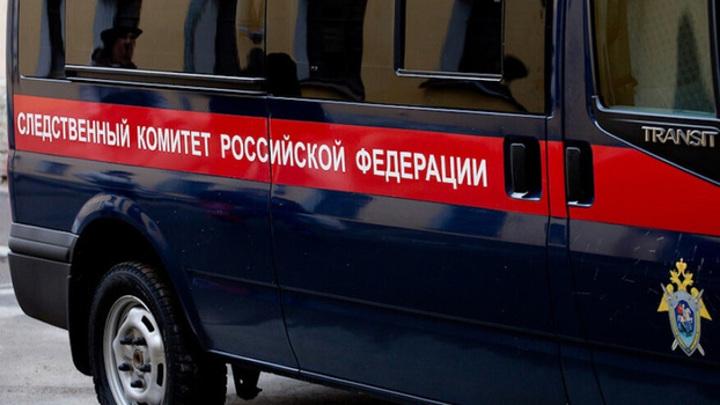 В Пензенской области до смерти забили 72-летнего пенсионера