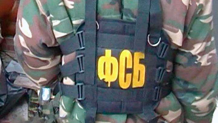 Архангелогородец изготовил 30 самодельных взрывных устройств