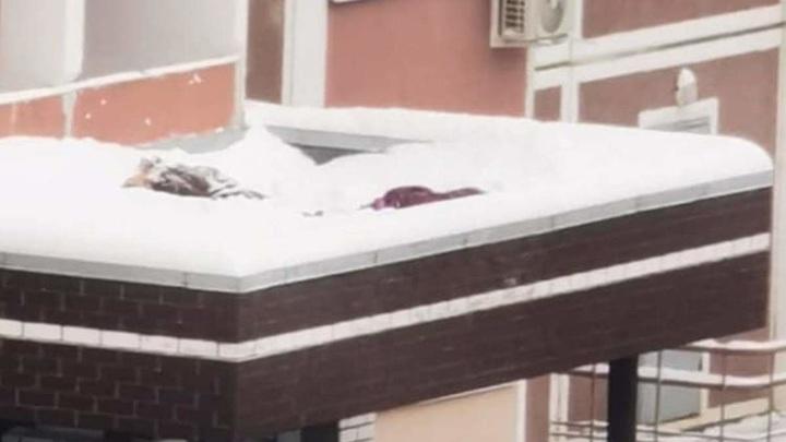 Две девочки выпали с 17-го этажа в Химках