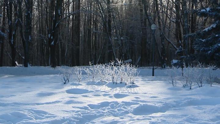 На Смоленщине продлили желтый уровень погодной опасности из-за морозов