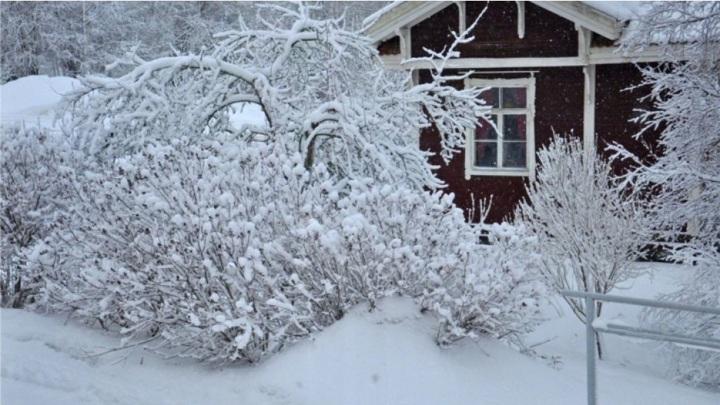 В Чебоксарском районе спасли пожилого мужчину с обморожением