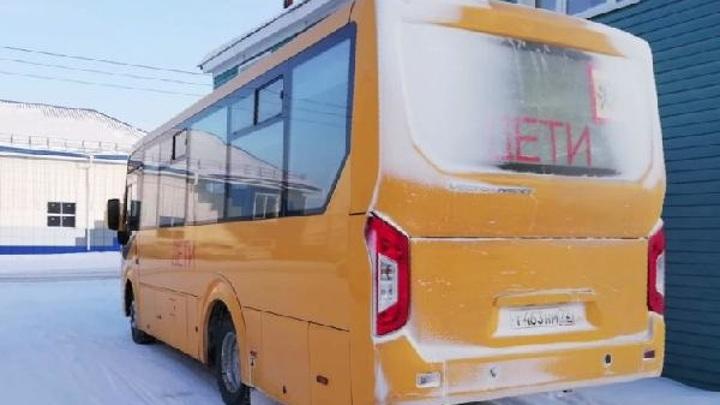 Каждый пятый водитель автобуса в Тюменской области является нарушителем