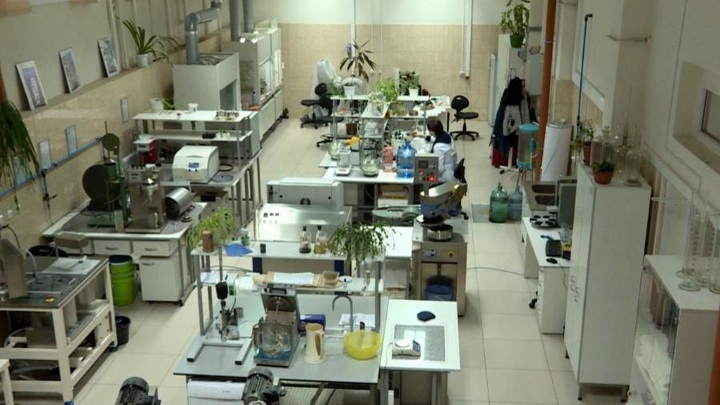 Архангельский ЦБК построит один из самых инновационных в России центров саженцев