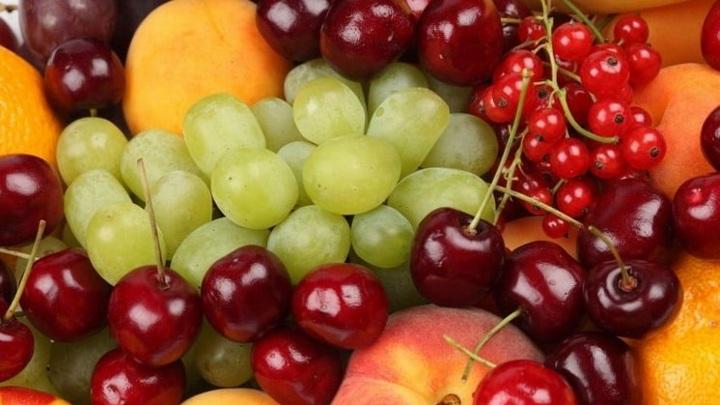 В Новосибирск не пустили 60 тонн небезопасных овощей и фруктов