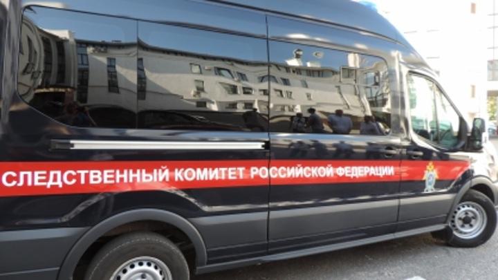 Ростовчанина будут судить за преступления сексуального характера в отношении двух девочек
