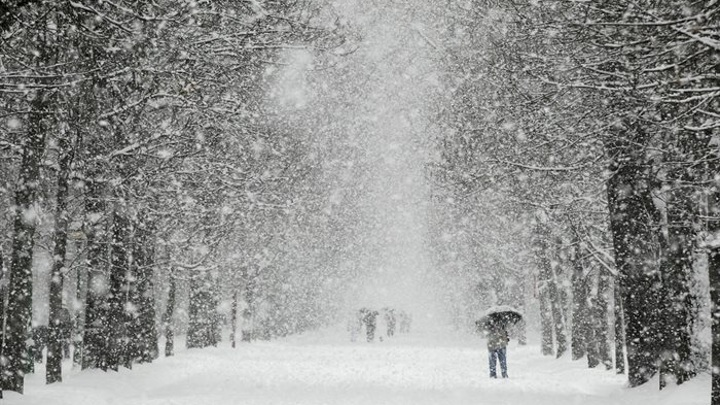 МЧС Карелии предупредило о сильных снегопадах