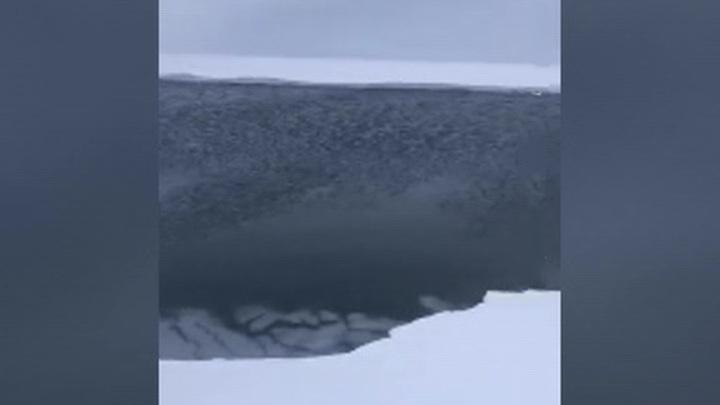 На Сахалине спасают унесенных в море рыбаков