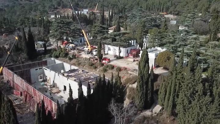 Кремль разберется с вырубкой деревьев в парке Фороса