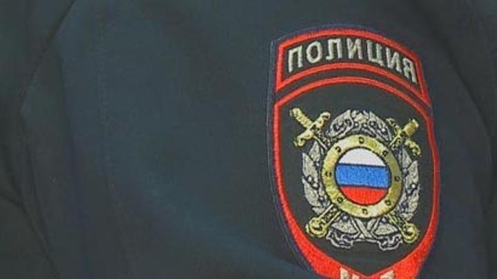 Женщина получила срок за укус новосибирского полицейского в ногу