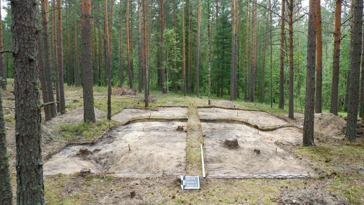 Девять новых объектов археологического наследия выявили томские ученые