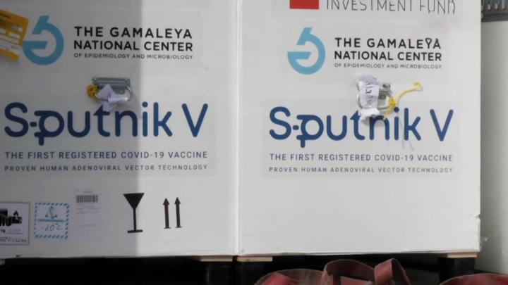 """Гинцбург: """"Спутник V"""" эффективнее других вакцин против южноафриканского штамма"""