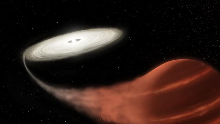 Белый карлик буквально высасывает вещество из близкой звезды.