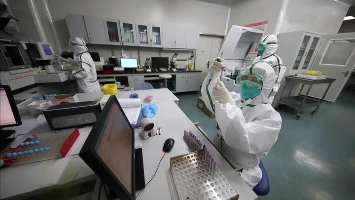 Ученые пока не нашли источник мировой пандемии