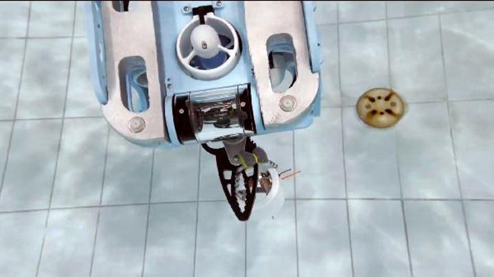Подводные соревнования среди роботов прошли в Тюмени