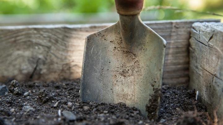 Житель Марий Эл избил свою жену лопатой