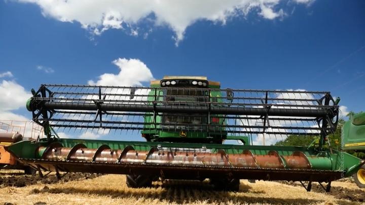 Урожай зерна на Ставрополье вырос в 1,7 раза