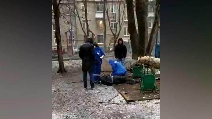 Дерево рухнуло на мужчину во время непогоды в Москве