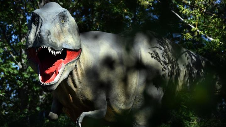 Учёные выяснили, сколько тираннозавров обитало на Земле за всю историю вида.