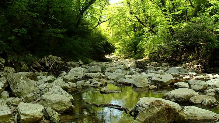 В Краснодарском крае создадут 34 особо охраняемые территории