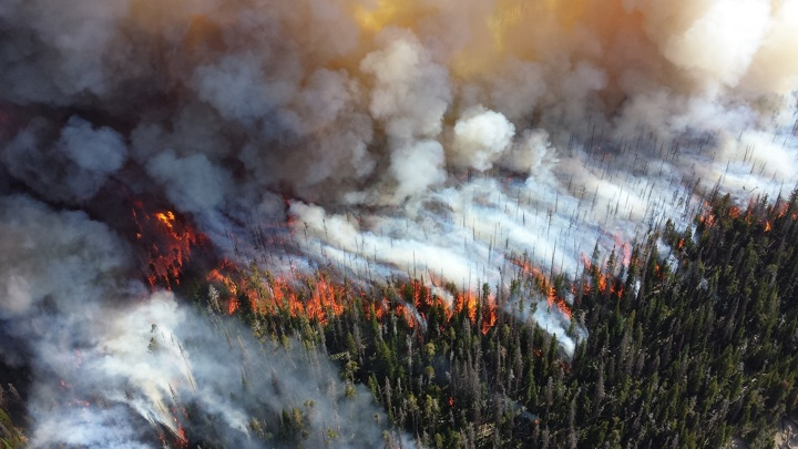 Количество природных пожаров в Приморском крае за сутки удвоилось