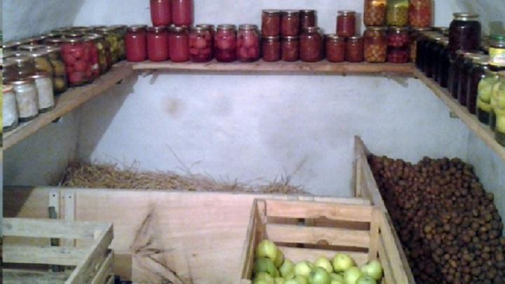 В Липецкой области задержан похититель 19 ведер овощей