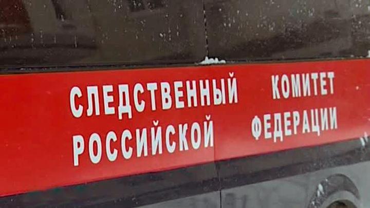 Жительница Пермского края пыталась убить брата ради квартиры