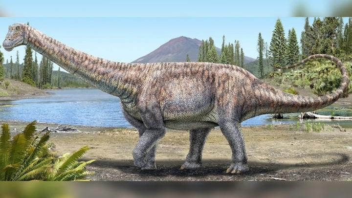 Даже в незрелом возрасте динозавр достигал шести метров в длину.