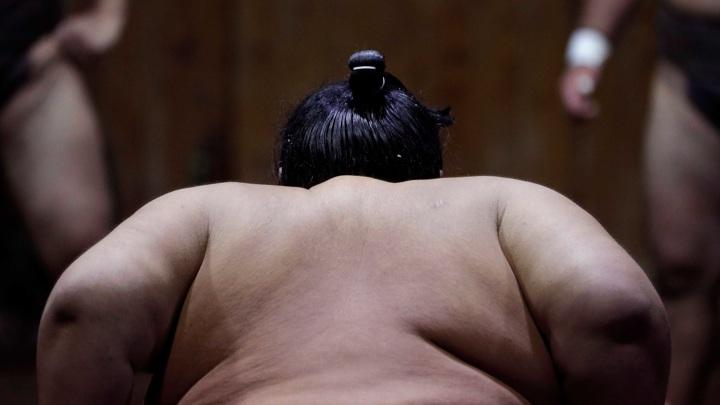 Японский сумоист скончался после падения на голову