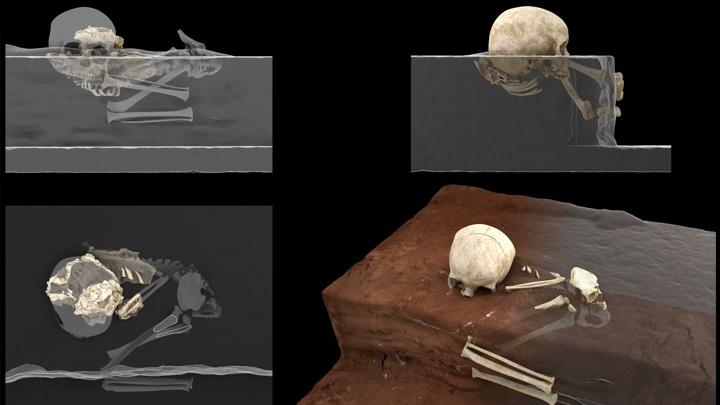 Виртуальная реконструкция положения останков в месте раскопок.
