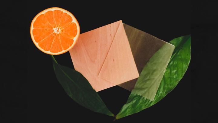 Прозрачная древесина может стать новым словом в строительстве.