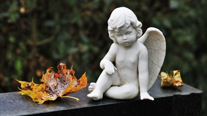 Труп в пакете: мертвого младенца нашли на кладбище