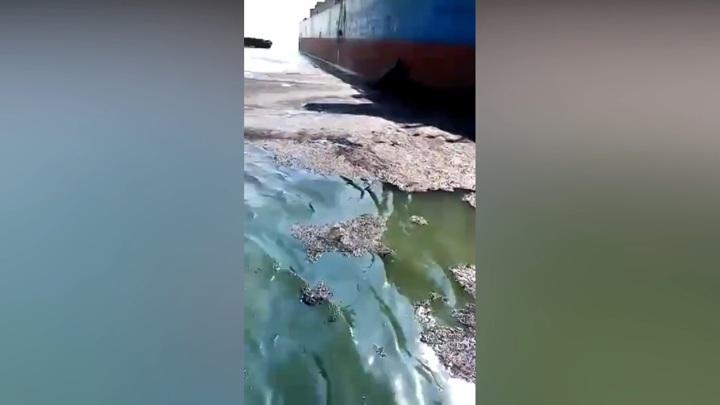 Акваторию порта на Сахалине залило мазутом после столкновения кораблей