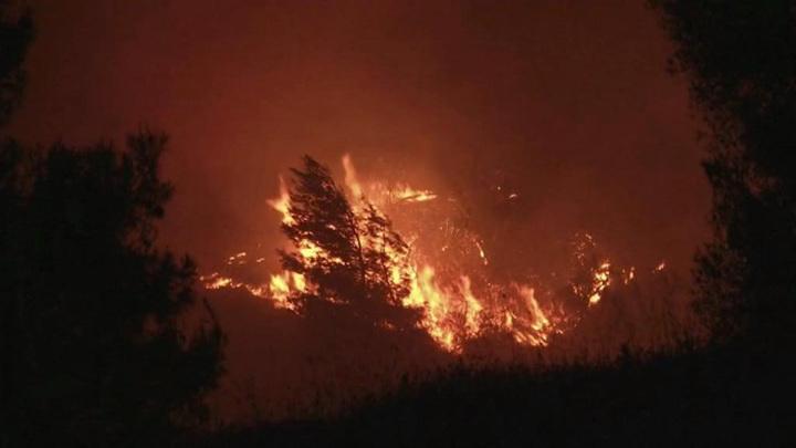 Дым доходил до Афин: пожар не могут потушить третьи сутки