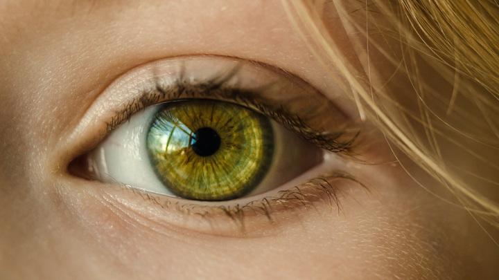 Пигментный ретинит характеризуется постепенной потерей светочувствительных клеток сетчатки: фоторецепторов.