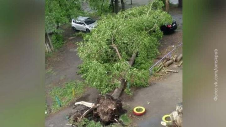 В Омске вновь ожидают ураган