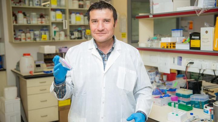 Ведущий автор исследования доктор Хаим Коэн в своей лаборатории.