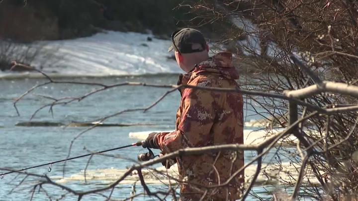 Мурманским рыбакам добавили квоту на семгу