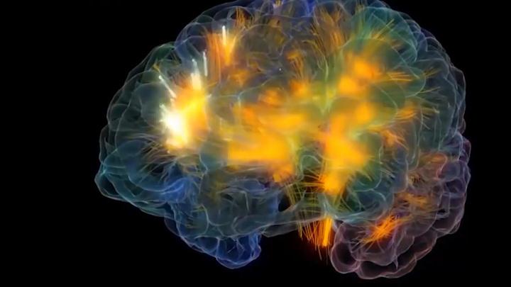 Коронавирус убивает клетки головного мозга